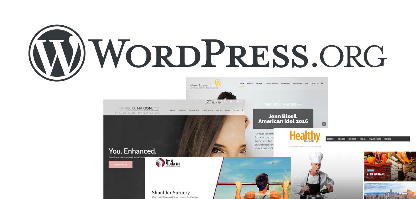 leadfront wordpress design